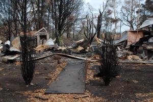 Narbethong Fires 2009 /img 11