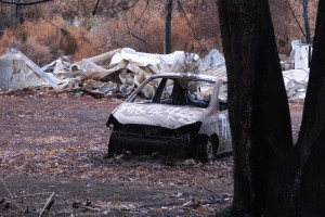 Narbethong Fires 2009 /img 9