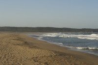 South coast NSW (Tathra)