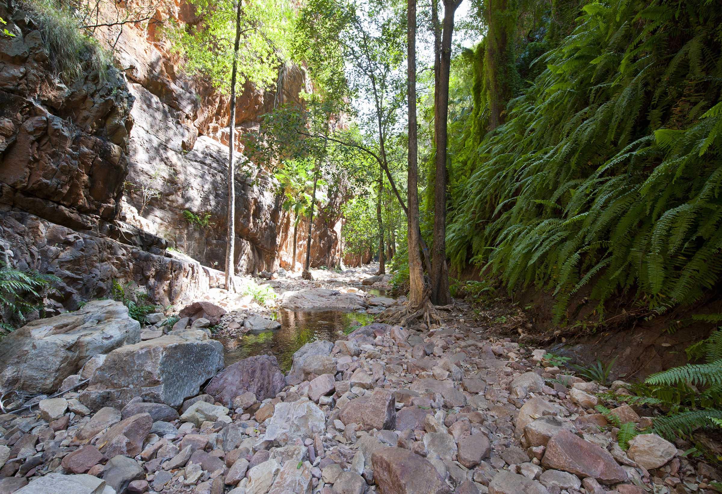 Tropical El Questro Gorge