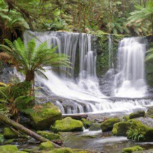 Tranquil water falls Tasmania
