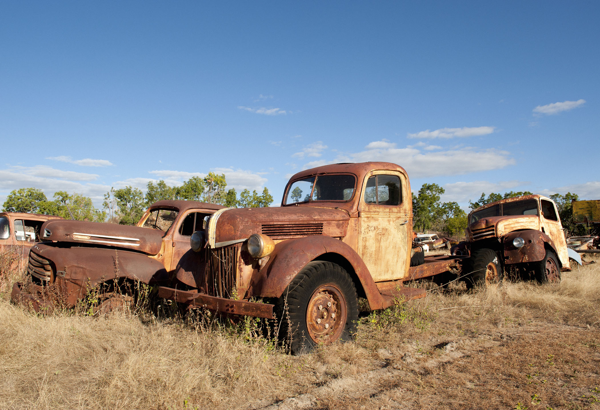Old Ford Trucks forgotten.