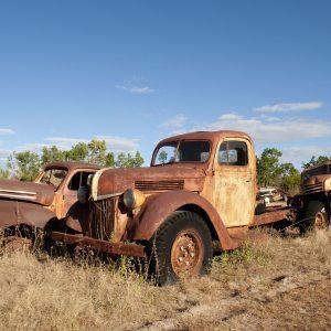 Old Ford Trucks forgotten.