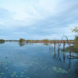 Parrys Lagoon still water